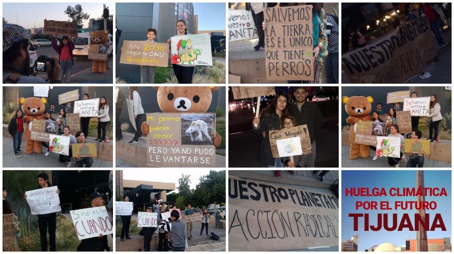 Qué tal nos fue en la Manifestación por el Cambio Climático:TIJUANA